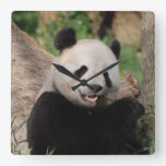 Smiling Panda Bear Wallclocks