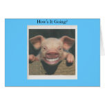 smiling pig how's it going card