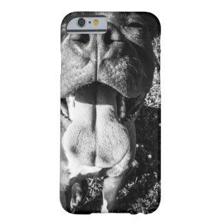 Smiling PitBull Barely There iPhone 6 Case