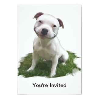 Smiling Pittie Custom Invitations