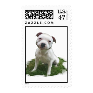 Smiling Pittie Postage