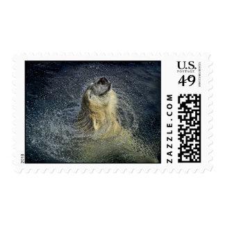 Smiling Polar Bear Water Swirl Stamps