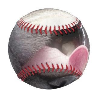Smiling pug.Funny pug Baseball
