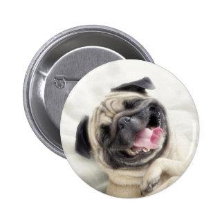 Smiling pug.Funny pug Button