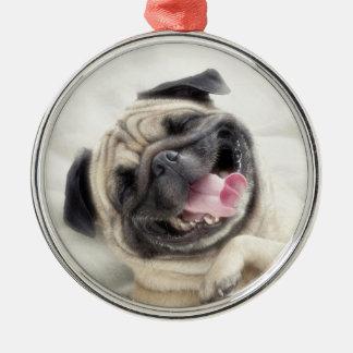 Smiling pug.Funny pug Metal Ornament