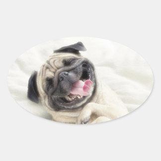 Smiling pug.Funny pug Oval Sticker