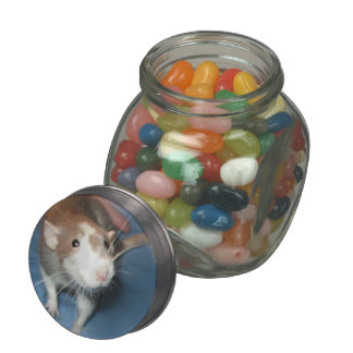 SMILING RAT GLASS CANDY JAR