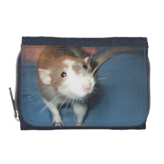 SMILING RAT WALLET/ COIN PURSE WALLET