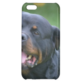 Smiling Rottweiler Cover For iPhone 5C