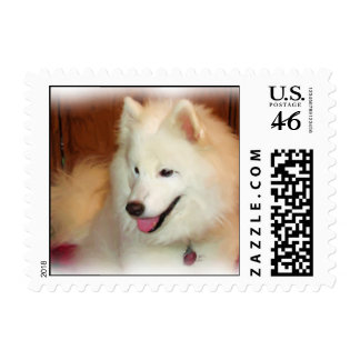 Smiling Samoyed Digital Oil Painting Effect Stamps
