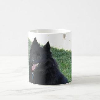 Smiling Schipperke Dog Mug