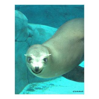 Smiling Sea Lion - Saint Louis Zoo Letterhead Template