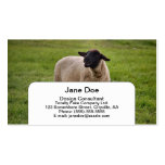 Smiling Sheep Business Cards