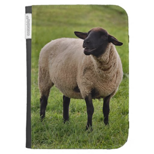 Smiling Sheep Case For The Kindle