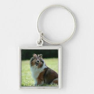 Smiling Shetland Sheepdog keychain