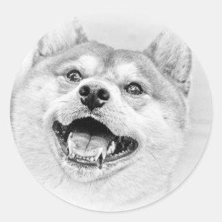 Smiling Shiba Inu dog Classic Round Sticker