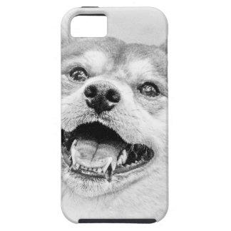 Smiling Shiba Inu dog iPhone SE/5/5s Case