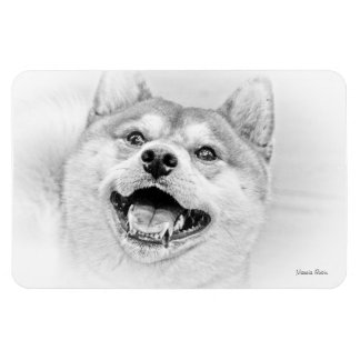 Smiling Shiba Inu dog Rectangular Photo Magnet