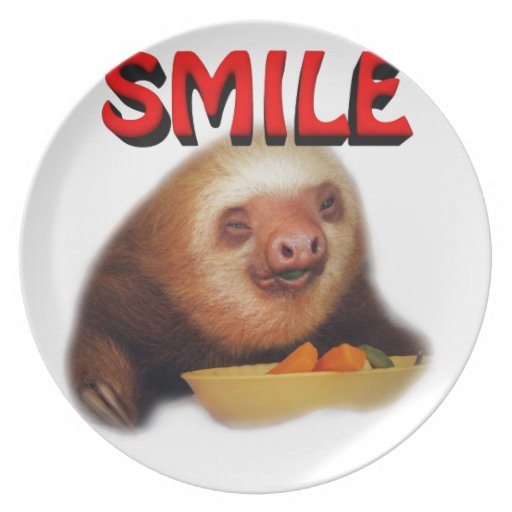 smiling slothie party plate