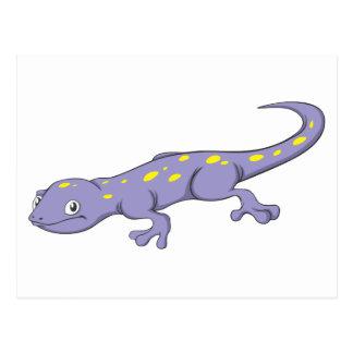 Smiling Spotted Salamander Postcard