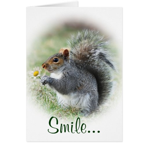 Smiling Squirrel Card