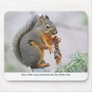 Smiling Squirrel Eating Pine Cone Mouse Pad