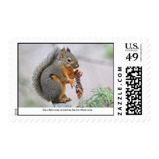 Smiling Squirrel Eating Pine Cone Stamp