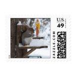 Smiling Squirrel Stamp