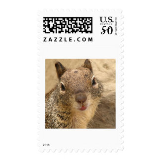 Smiling Squirrel stamp 2