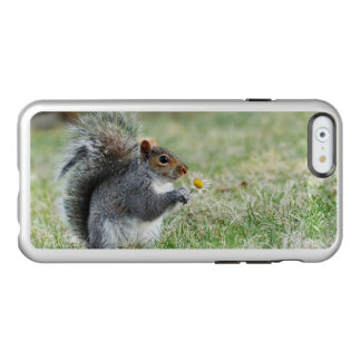 Smiling Squirrel with Daisy Incipio Feather® Shine iPhone 6 Case