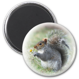 Smiling Squirrel with Daisy Magnet