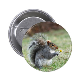 smiling squirrel with daisy pinback button
