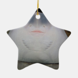 Smiling Sting Ray Swimming in Water Ceramic Ornament