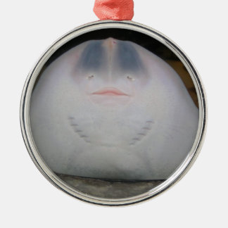 Smiling Sting Ray Swimming in Water Metal Ornament