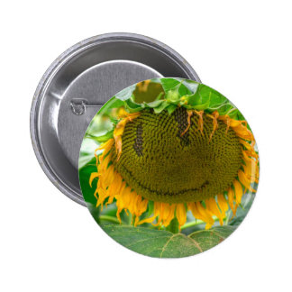 Smiling Sunflower Button