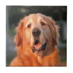 smiling to dear love golden retriever ceramic tile