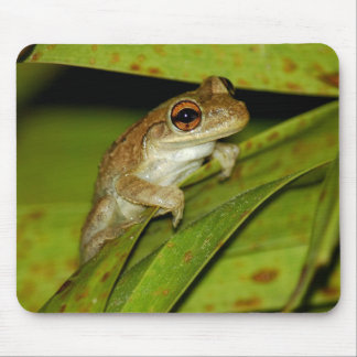 Smiling tree frog Mousepad