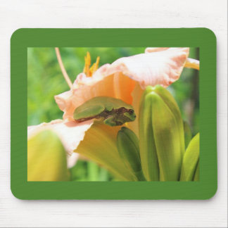 Smiling Tree Frog on the Pink Lily Mouse Pad