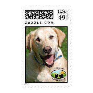 Smiling Yellow Lab Stamp