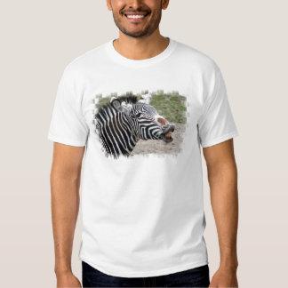 Smiling Zebra Men's T-Shirt