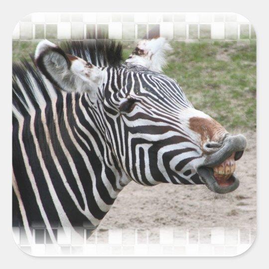 Smiling Zebra Stickers