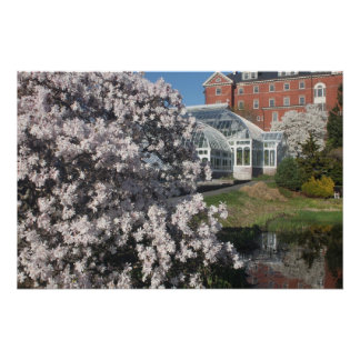 Smith College Lyman Plant House in Spring Poster