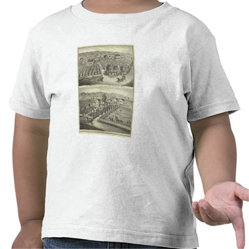 Smith, Herman residences, store Tee Shirt