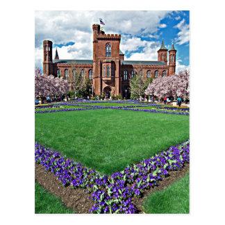 Smithsonian Castle and Haupt Garden Postcard