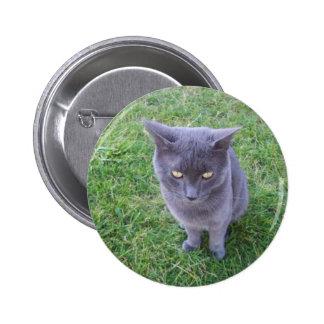 Smokey el botón del gato pin