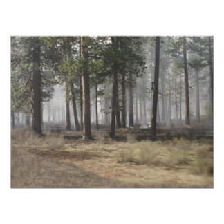 Smokey Forest Poster