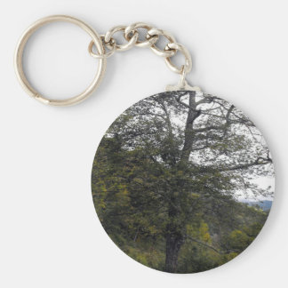 Smokey Mountain Tree Keychains