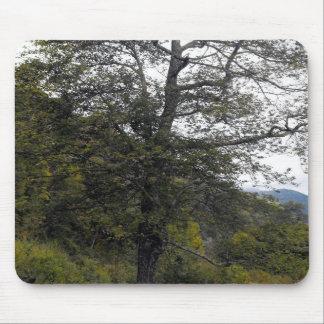 Smokey Mountain Tree Mouse Pad