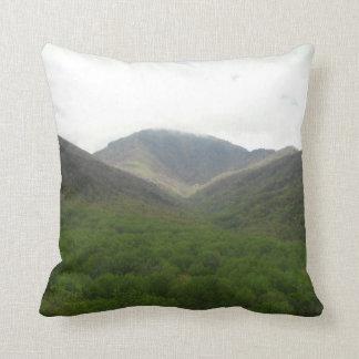 Smokey Mountains Pillow