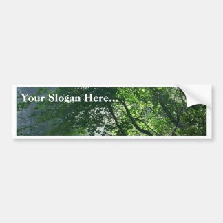 Smokey Paths Trails Forests Woods Bumper Sticker